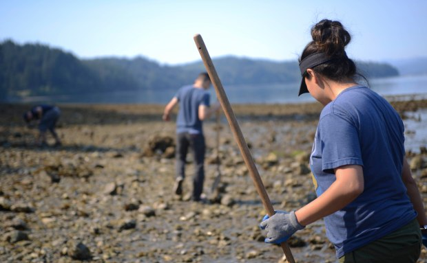 NAVAL BASE KITSAP-BREMERTON, Wash. (Aug. 20, 2016) – Sailors assigned to USS Nimitz (CVN 68) volunteer at the Guillemot Cove Park in Bremerton, Wash. to clean up along the trails and beach. Nimitz is currently undergoing an extended planned incremental maintenance availability at Puget Sound Naval Shipyard and Intermediate Maintenance Facility, where the ship is receiving scheduled maintenance and upgrades. (U.S. Navy photo by Mass Communication Specialist Seaman Liana N. Nichols/Released)